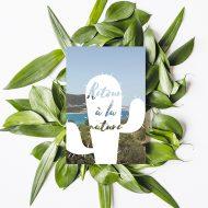 carte-postale-cactus